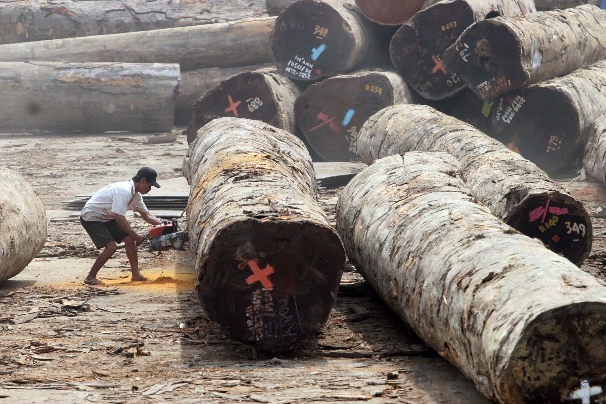 Kalangan produsen furnitur dan kerajinan rotan menilai, masih adanya kendala yang dihadapi Indonesia dalam kegiatan ekspor produk hasil kayu dan rotan ke Uni Eropa (UE) menunjukkan penerapan Sistem Verifikasi Legalitas…