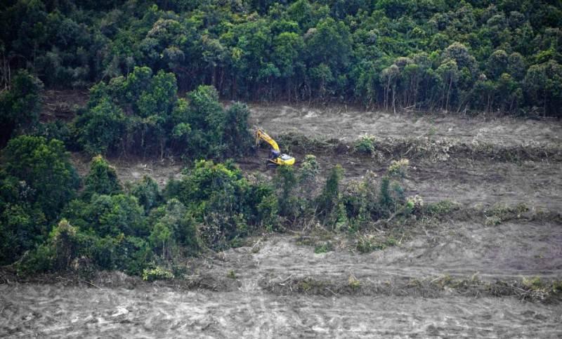 Kebijakan moratorium perkebunan kelapa sawit nampaknya memang masih belum akan segera tuntas. Terbukti, Kementerian Pertanian (Kementan) saja masih mengusulkan kewenangan dalam draft Inpres yang bertajuk Evaluasi dan Penundaan Perizian Perkebunan…