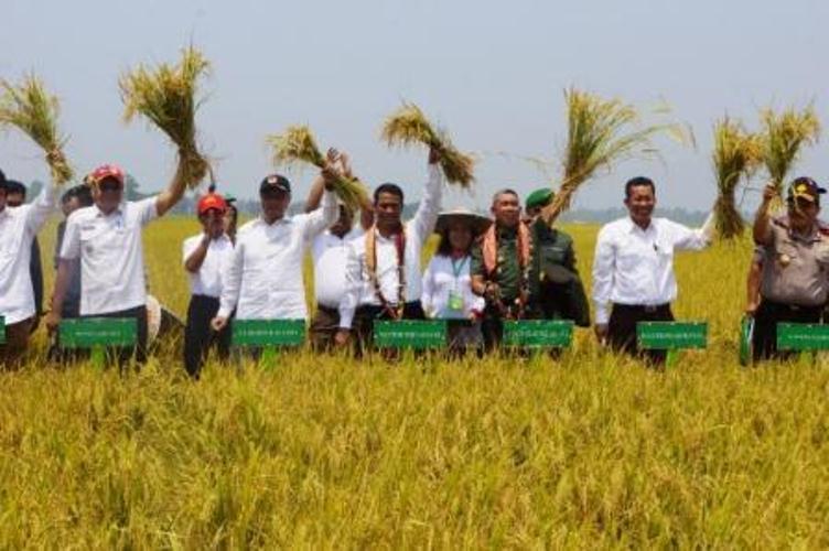 Pemerintah mengalokasikan dana sekitar Rp20 triliun untuk membeli gabah petani di seluruh Indonesia. Pembelian gabah ini melalui Bulog. Menteri Pertanian Amran Sulaiman meminta Bulog lebih gencar membeli hasil panen petani…