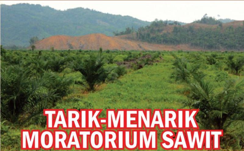 Niat Presiden Joko Widodo melakukan penundaan izin-izin baru perkebunan kelapa sawit (moratorium) ternyata tidak semudah yang diduga. Sejak dilontarkan pertengahan April, sampai kini Inpres moratorium belum juga tuntas dibahas. Ada…