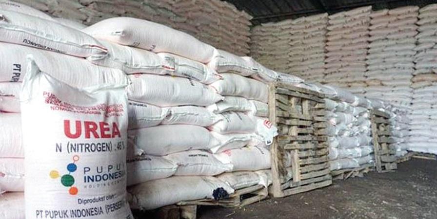 Antisipasi Kelangkaan Pupuk Subsidi, Petani Diimbau Gunakan Pupuk  Nonsubsidi - AgroIndonesia